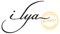 Ilya Vineyards - Adelaide Hills Wine